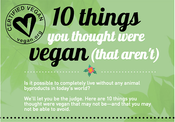 10 things that aren't vegan